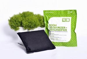 Everbamboo-bamboo-charcoal-room-deodorizer