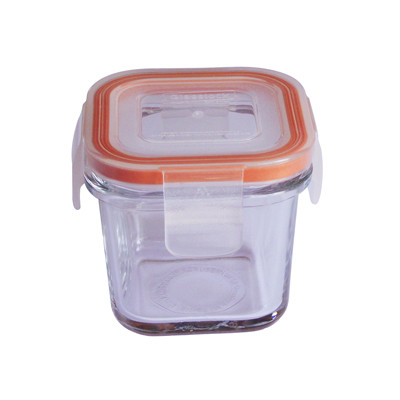 Small cube glass food storage container
